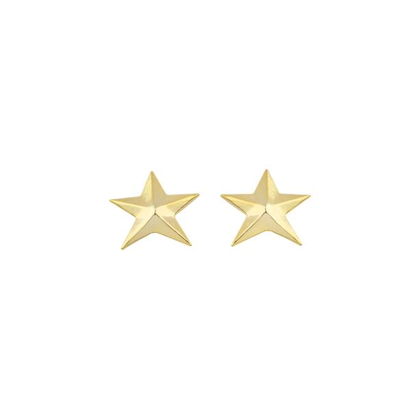- NEV STAR EARRINGS