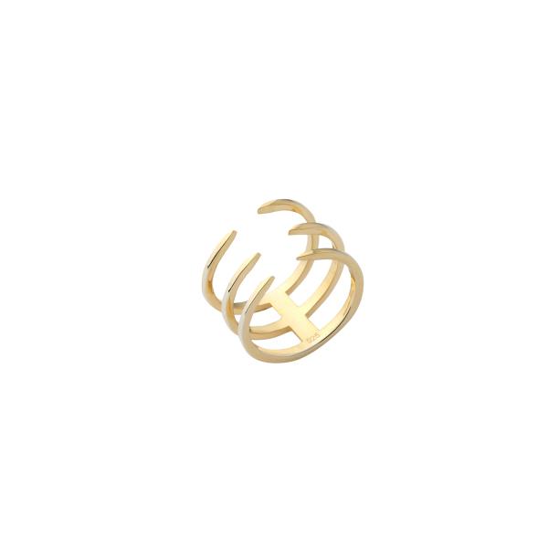 - PAW RING (1)