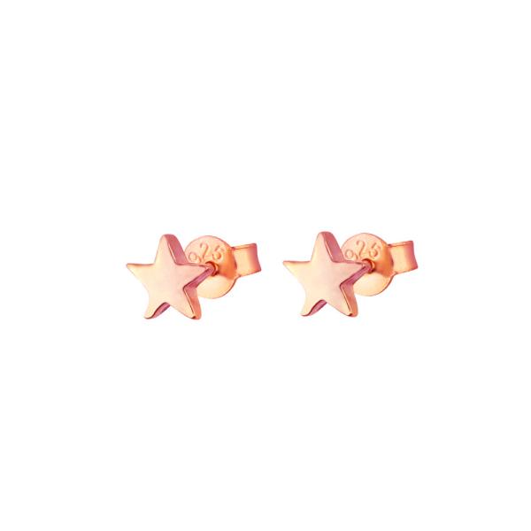 - STAR BRIGHT ROSE EARRINGS