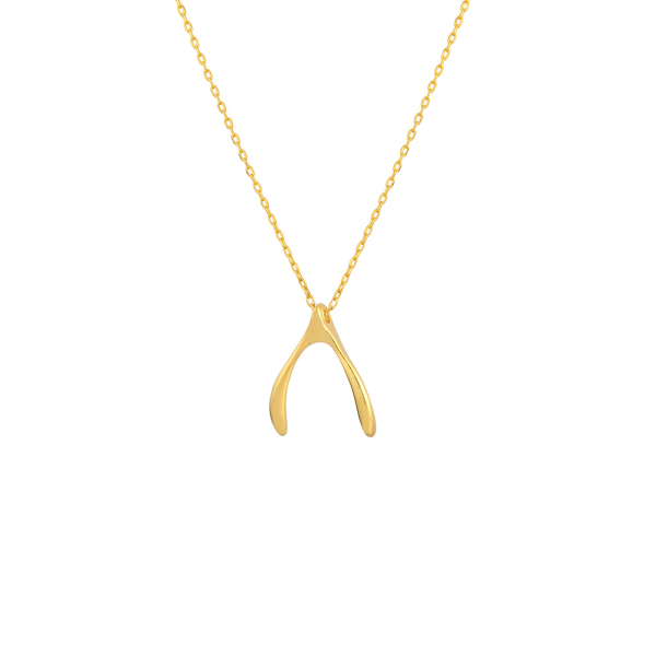 - STRENGTH WISHBONE NECKLACE
