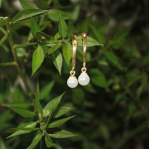 - HOOP PEARL EARRINGS (1)