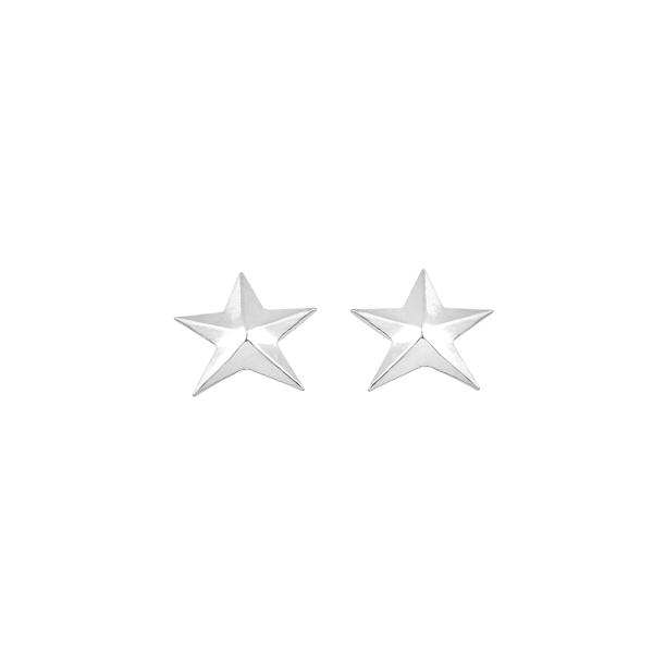 - NEV STAR ROSE EARRINGS