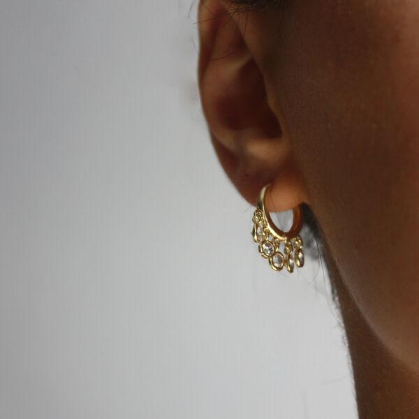 - PHASELIS EARRINGS (1)