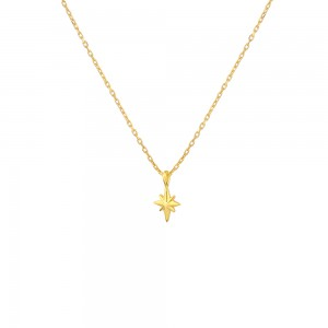 - TRUE NORTH TINY NECKLACE