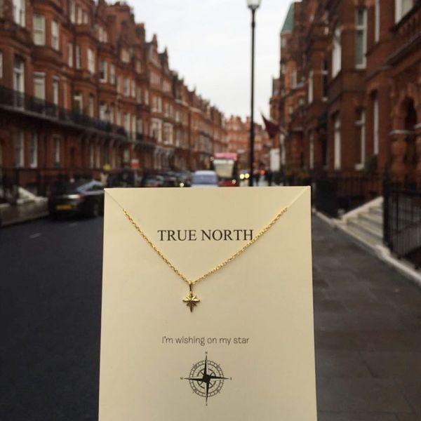 - TRUE NORTH TINY NECKLACE (1)
